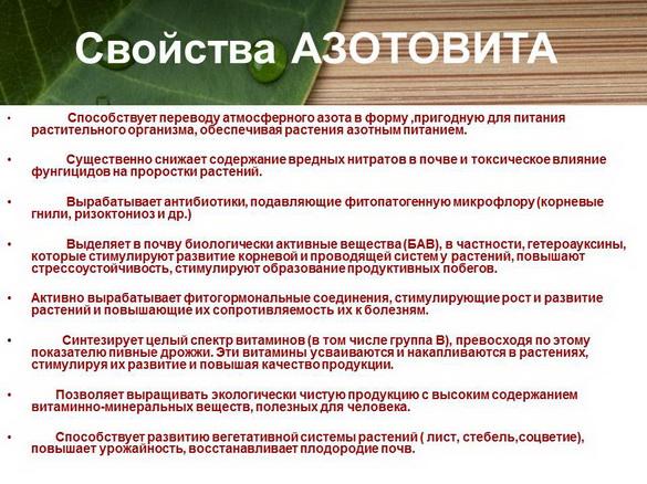 azotovit_i_fosfovit_pr_12