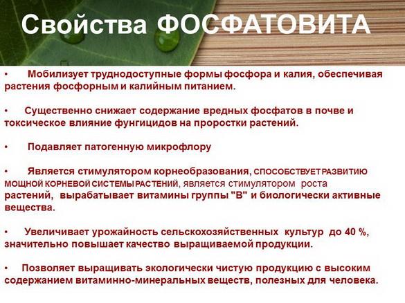 azotovit_i_fosfovit_pr_14