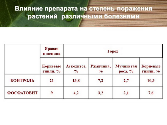 azotovit_i_fosfovit_pr_18