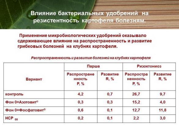 azotovit_i_fosfovit_pr_22