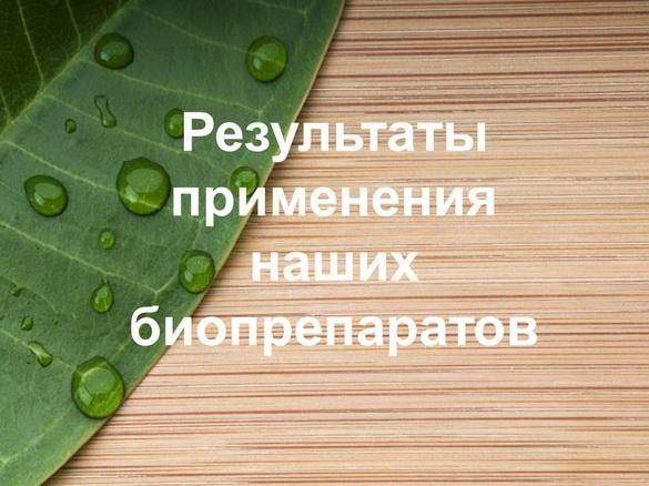 azotovit_i_fosfovit_pr_24