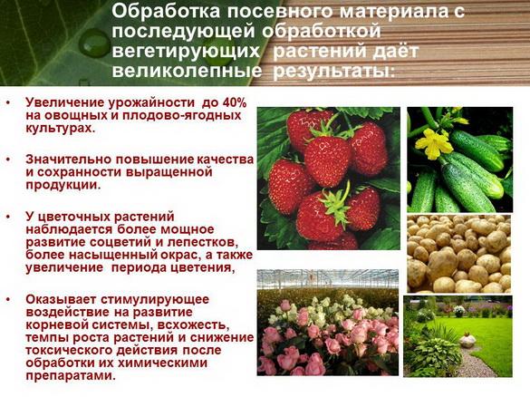 azotovit_i_fosfovit_pr_25