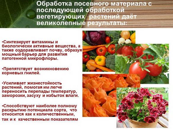 azotovit_i_fosfovit_pr_26