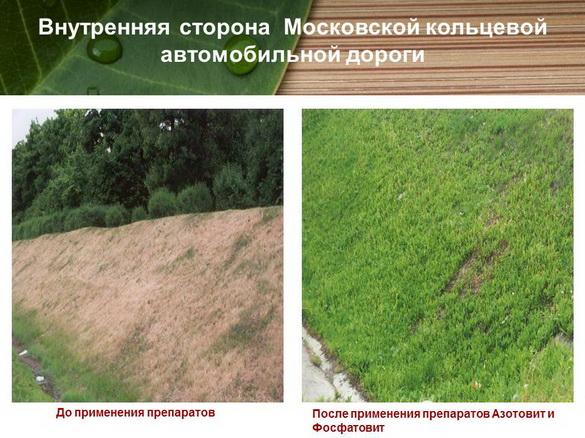azotovit_i_fosfovit_pr_29