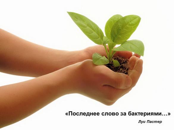 azotovit_i_fosfovit_pr_38