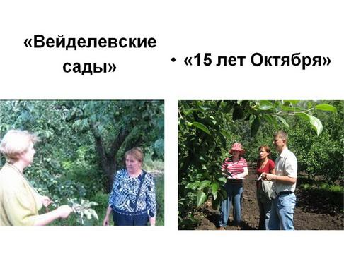 15_1.jpg
