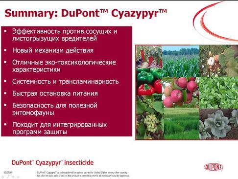 dupon_pr2_19_1.jpg