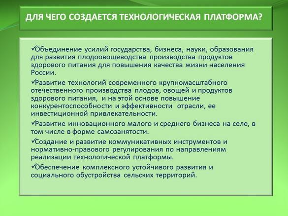 kvochkin_prezentaciya_06_1