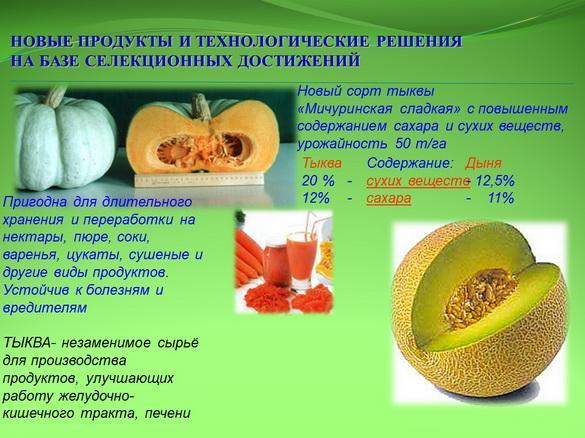 kvochkin_prezentaciya_16_1