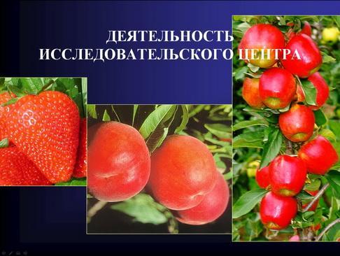 mazzoni_pr_11_1.jpg