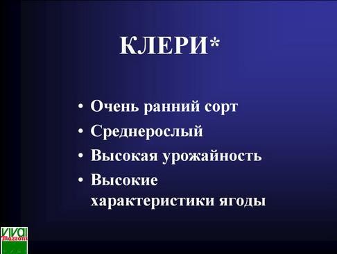 mazzoni_pr_14_1.jpg