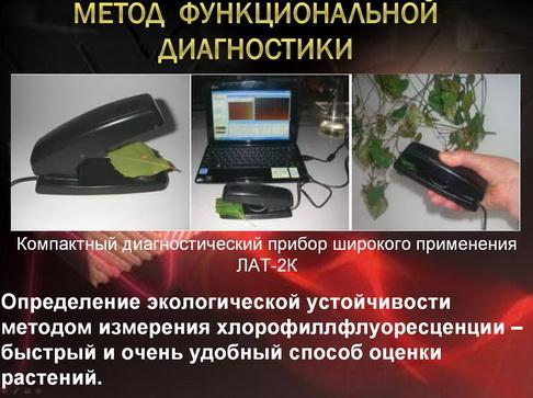 antocyani_milyaev_pr_04_1.jpg
