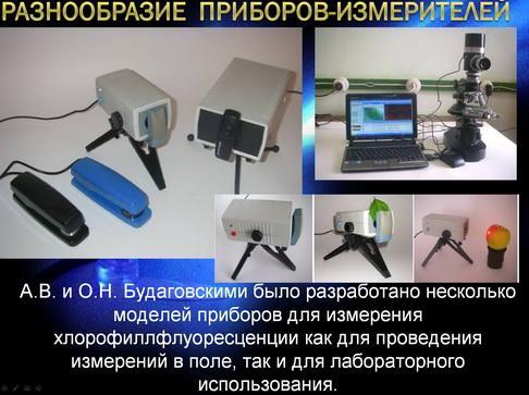 antocyani_milyaev_pr_05_1.jpg