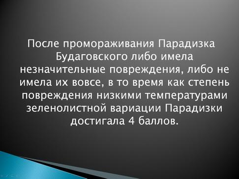 antocyani_milyaev_pr_09_1.jpg