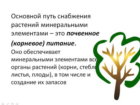 nekornevie_podkormki_vniis_pr_01