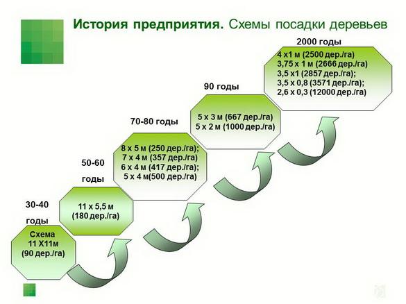 sad-gigant_klad_pr_2012_04