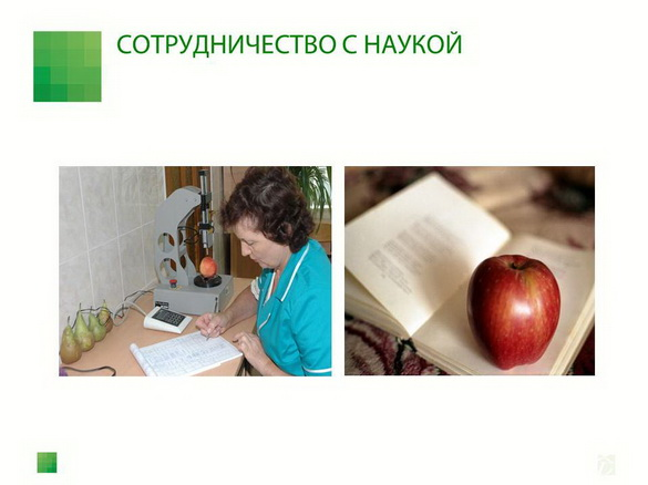 sad-gigant_klad_pr_2012_09