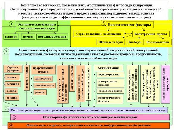 sad-gigant_klad_pr_2012_12
