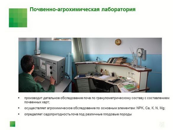 sad-gigant_klad_pr_2012_16