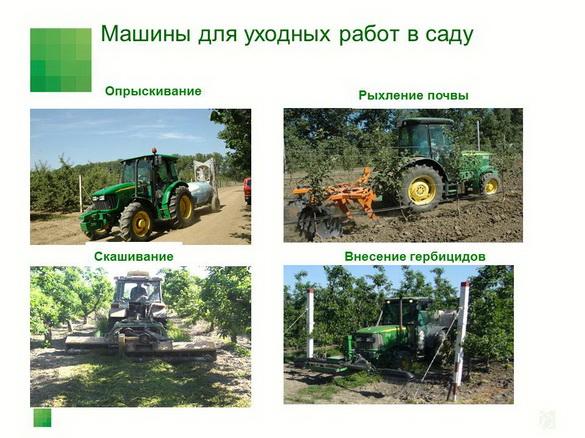 sad-gigant_klad_pr_2012_37