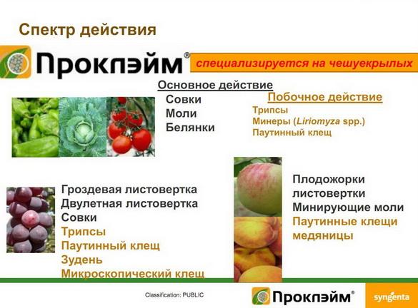 insekticidy_syngenta_09