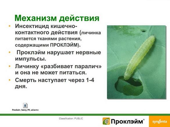 insekticidy_syngenta_17