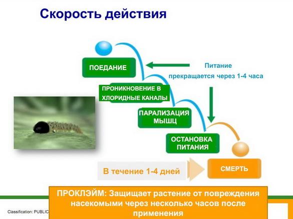 insekticidy_syngenta_18