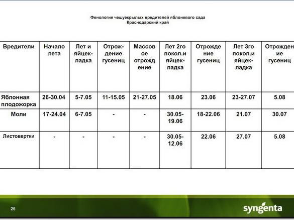 insekticidy_syngenta_25
