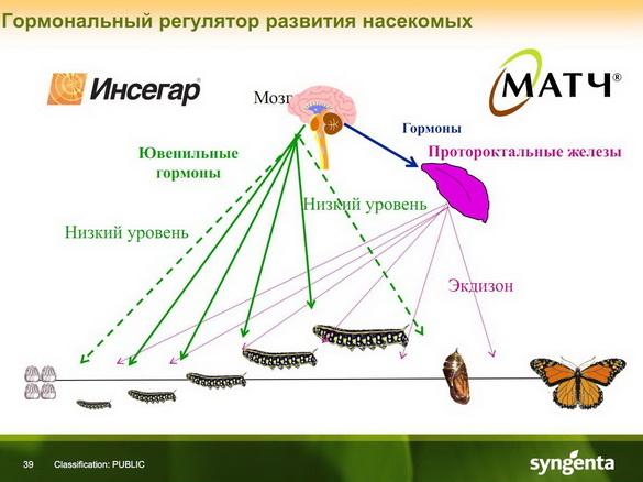insekticidy_syngenta_36