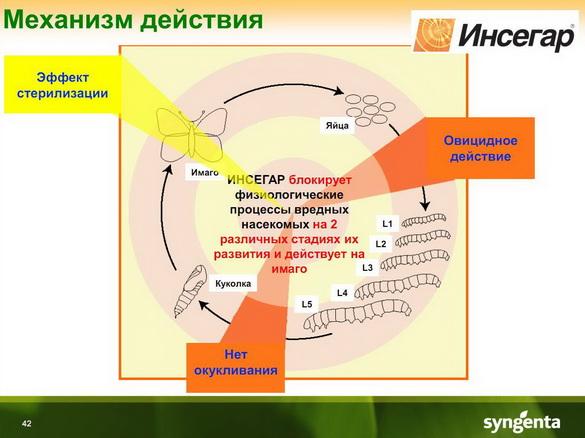 insekticidy_syngenta_40