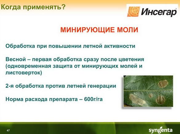 insekticidy_syngenta_45