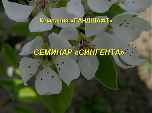 syngenta_seminar_pr_01_1