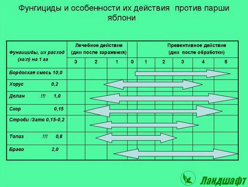 syngenta_seminar_pr_07_1