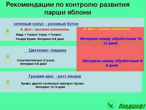 syngenta_seminar_pr_09_1