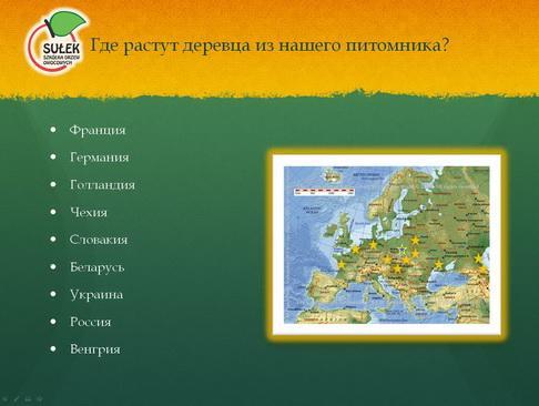 sulek_pitomnik_pr_07_1.jpg