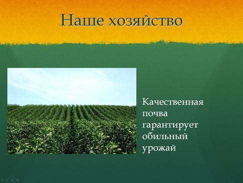 sulek_pitomnik_pr_09_1.jpg