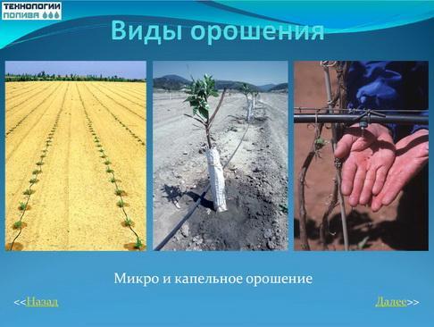 tehnologii_poliva_pr_04_1
