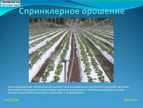 tehnologii_poliva_pr_05_1