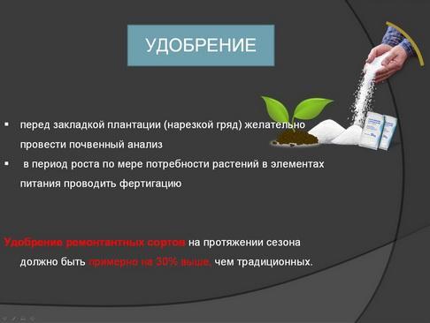 hortplant_pr_2_11_1.jpg