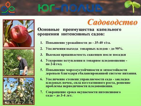 korolev_pr_06_1