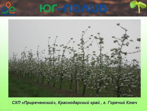 korolev_pr_13_1