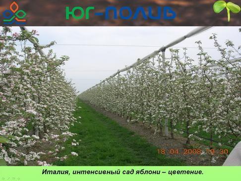 korolev_pr_17_1