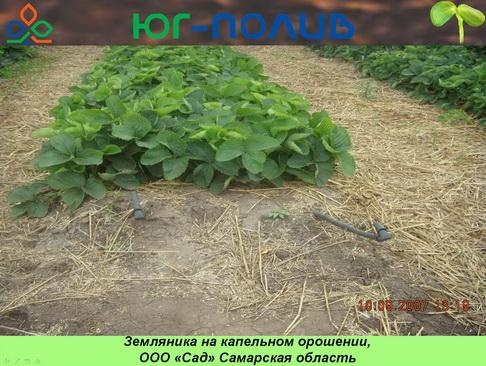 korolev_pr_21_1