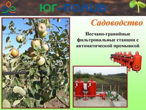 korolev_pr_24_1