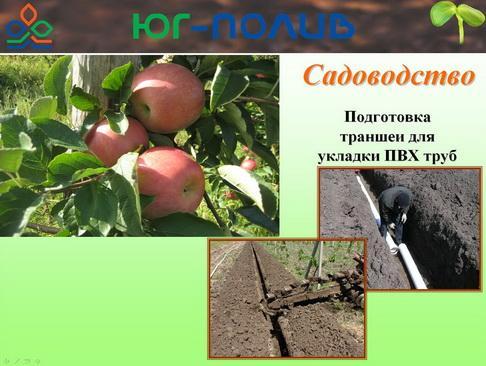 korolev_pr_25_1