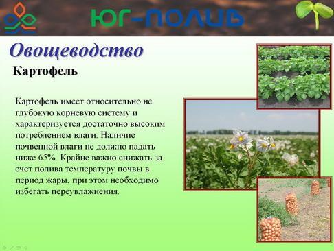 korolev_pr_32_1