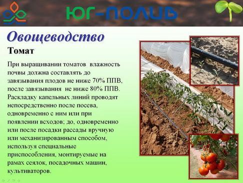 korolev_pr_33_1