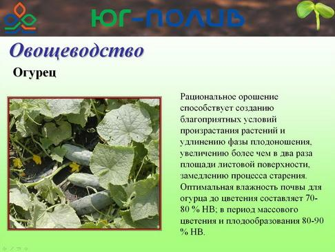 korolev_pr_34_1