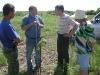 Проведение учебы по зеленым операциям при формировании плодовых