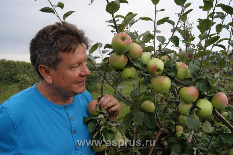 Устинов Анатолий Иванович, генеральный директор ООО «Плава»